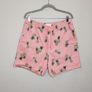 Urban Outfitters Pull On Cotton Shorts Pineapple L